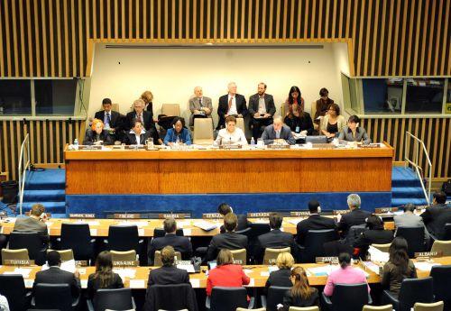 联合国人口与发展委员会第42届年会开幕