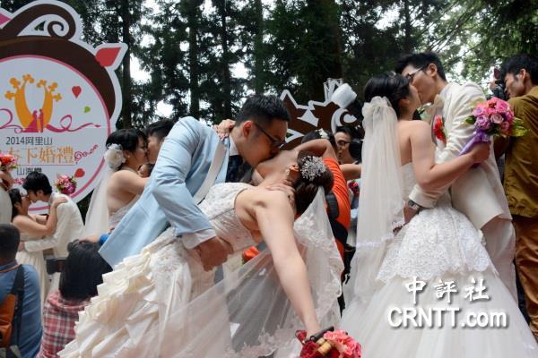 阿里山神木下婚礼 两岸新人深情拥吻