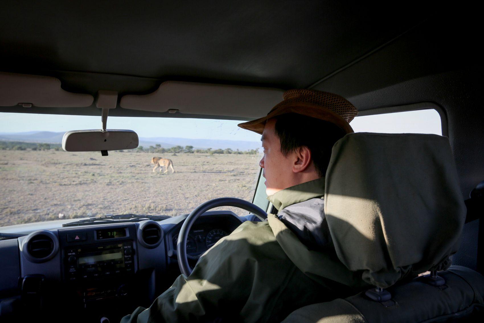 中国 狮子王 的非洲野生动物保护之路 组图