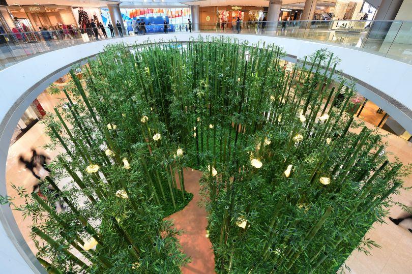 1月27日,在香港某大型商场,商场打造的