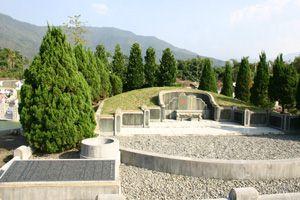 据一名曾到屏东县高树乡泰山公墓现场勘舆苏家祖坟的风水界人士评论