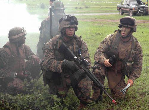 """本次演习是2006年度""""金色眼镜蛇""""多国联合军演的一部分."""