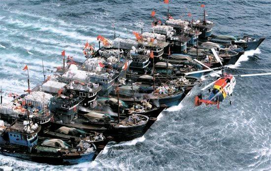 根廷击沉中国渔船_资料图:11月16日下午,11艘绑在一起的中国渔船在韩国附近海域躲避韩国