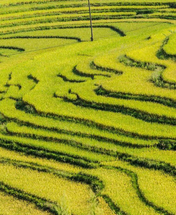 9月14日拍摄的福泉市龙昌镇的郊外梯田.新华社