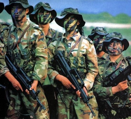 中国评论新闻 解放军陆军兵力被误读了