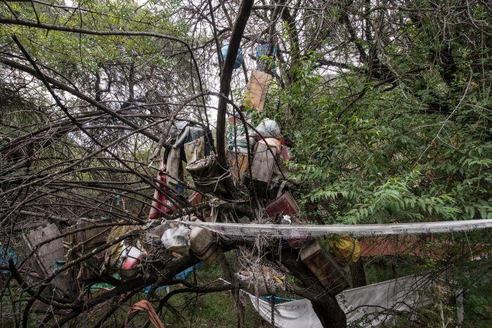 这是四川省白玉县盖玉乡帮果村降曲河边树葬群一角(8月22日摄).