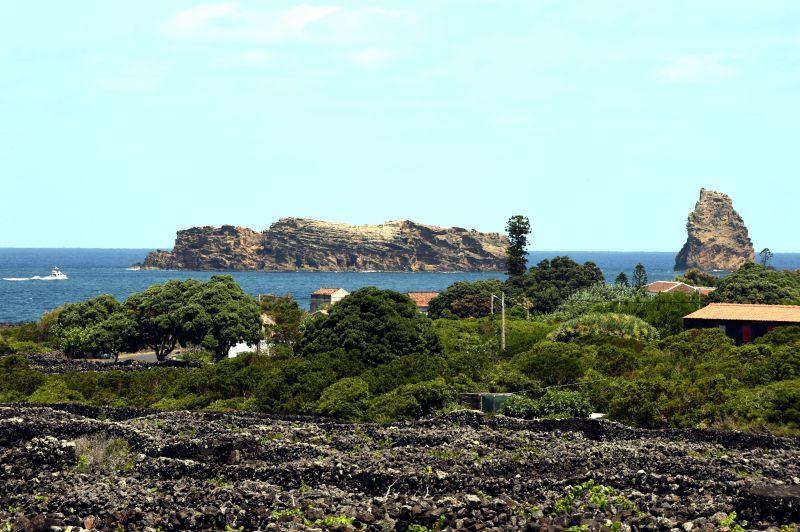葡萄牙皮库岛葡萄园文化景观(组图)