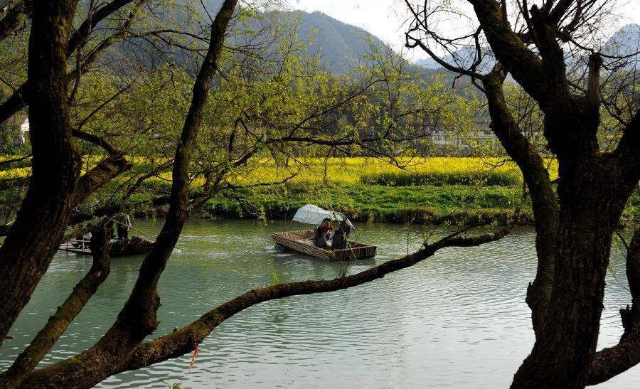 3月23日,游客在汉中市勉县元墩镇踏春赏花.新华社