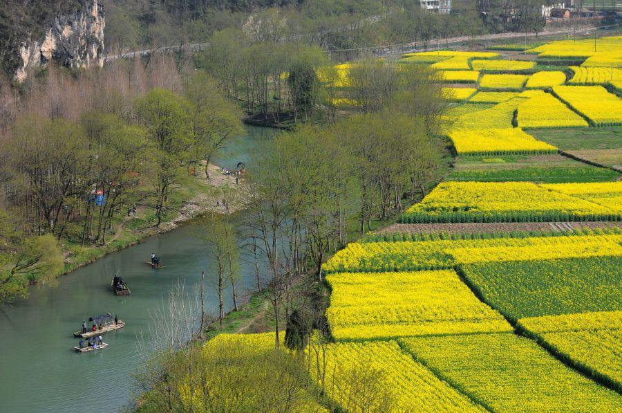 3月21日,在陜西省汉中市勉县元墩镇,游人在油菜花旁的河道乘坐竹筏
