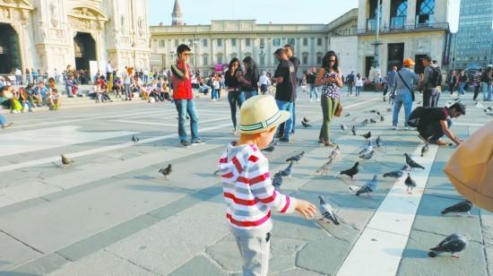 「歐洲鴿子廣場」的圖片搜尋結果