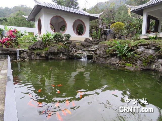 坪林茶博馆园林,流水,飞瀑 喝茶好自在