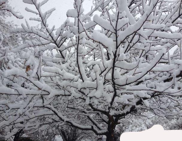 全国多地降雪