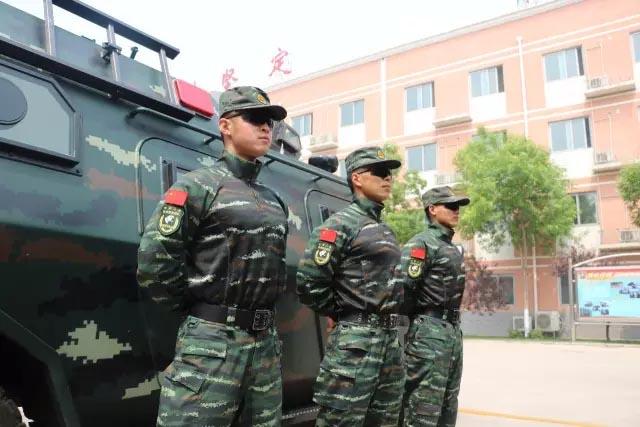 武警特种部队臂章.图片