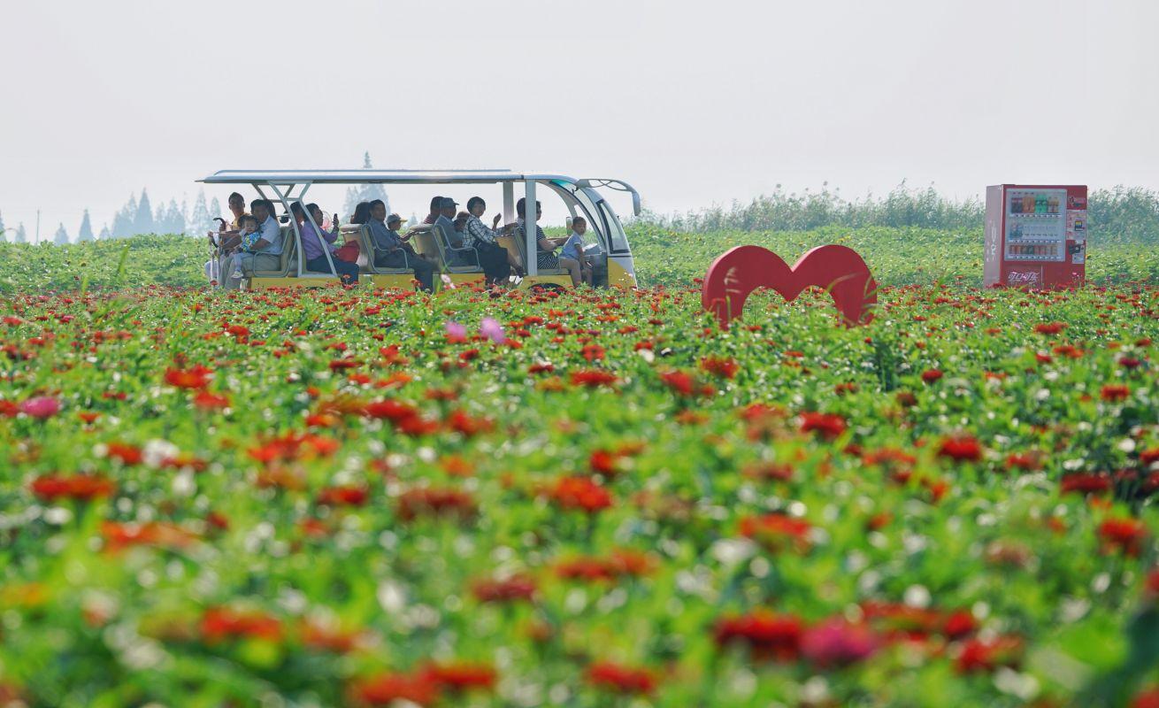 9月24日,游客在花海景区游览.新华社
