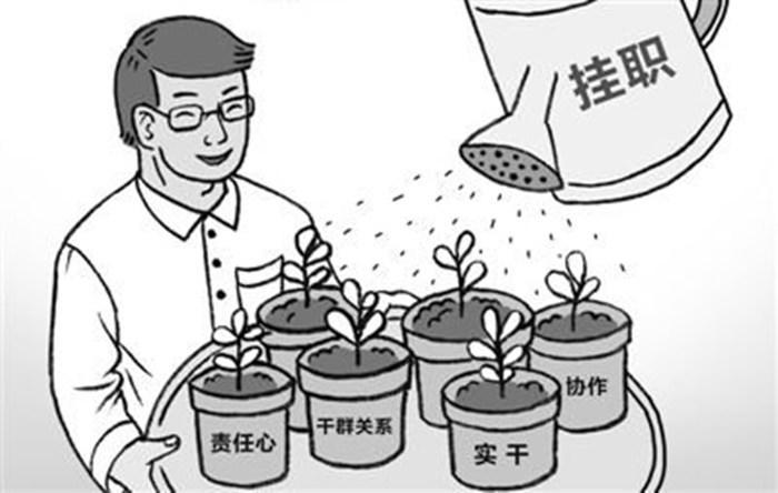 """幸运飞艇冠亚包赢钱:中央�M�部�x拔283名""""西老革""""�炻��植�"""